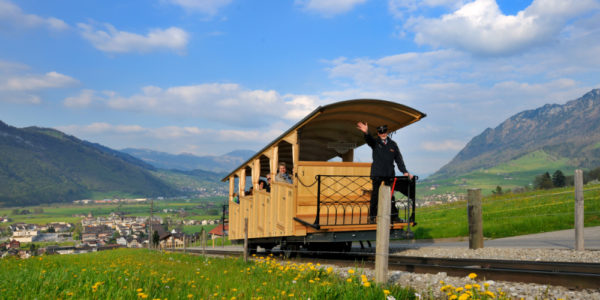 Switzerland private sightseeing tour